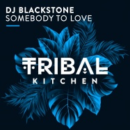 DJ Blackstone - Somebody to Love (by The Great! Society)